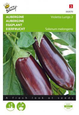 Aubergine violetta lunga 2