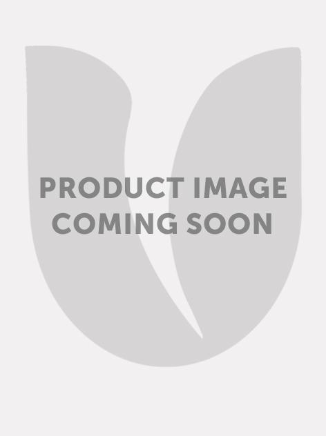 Bijvriendelijke bloembollenmix - groot