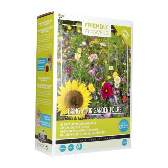 Friendly flowers xl - flower meadow 50m2