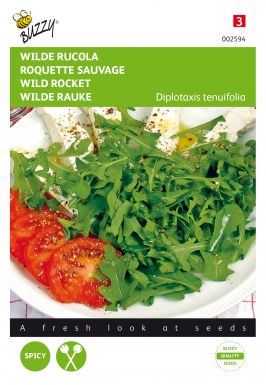 Roquette sauvage
